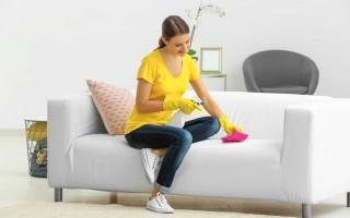 Как устранить запах и пятна мочи на диване