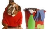 Как устранить неприятный запах собаки в квартире