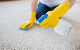 Чистка паласа в домашних условиях