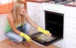 Особенности чистки духовки в домашних условиях