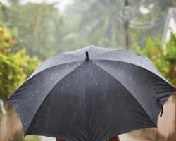 Как правильно мыть зонтик от грязи в домашних условиях