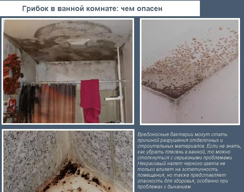 Чем опасен грибок в ванной