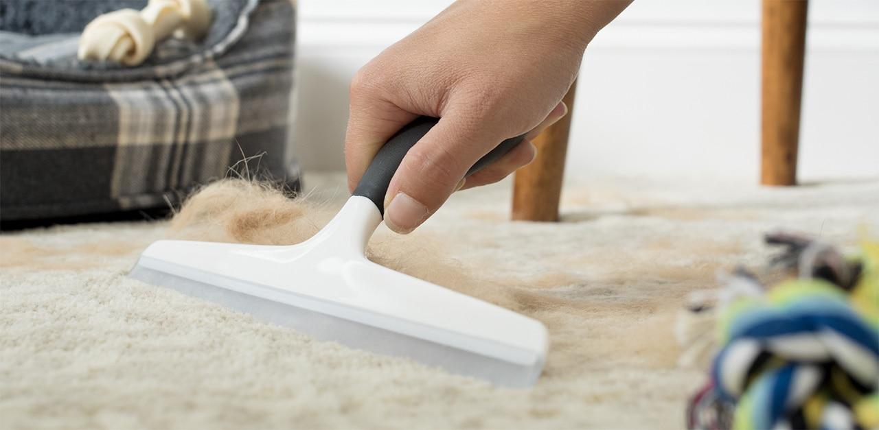Как почистить палас от шерсти
