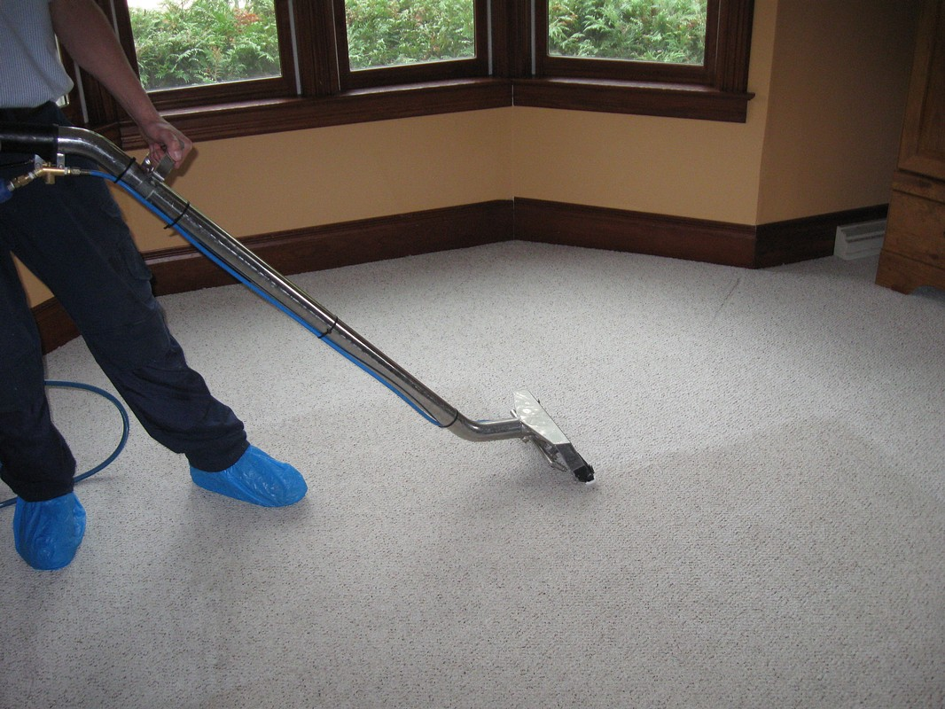 Как почистить ковролин в домашних условиях быстро и эффективно