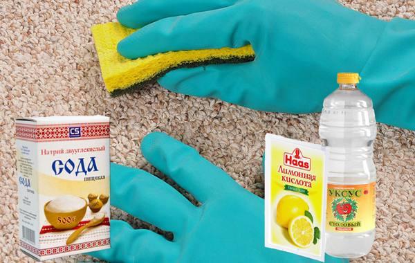 Средства удаления запаха собачьей мочи