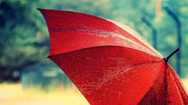 Правила ухода за зонтом