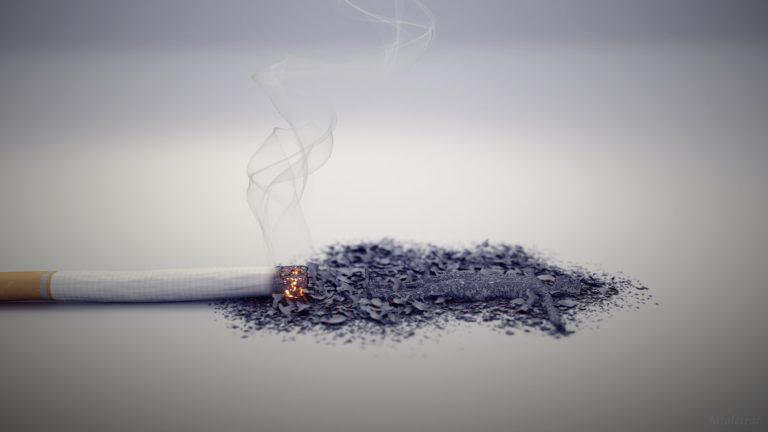 Запах табачного дыма
